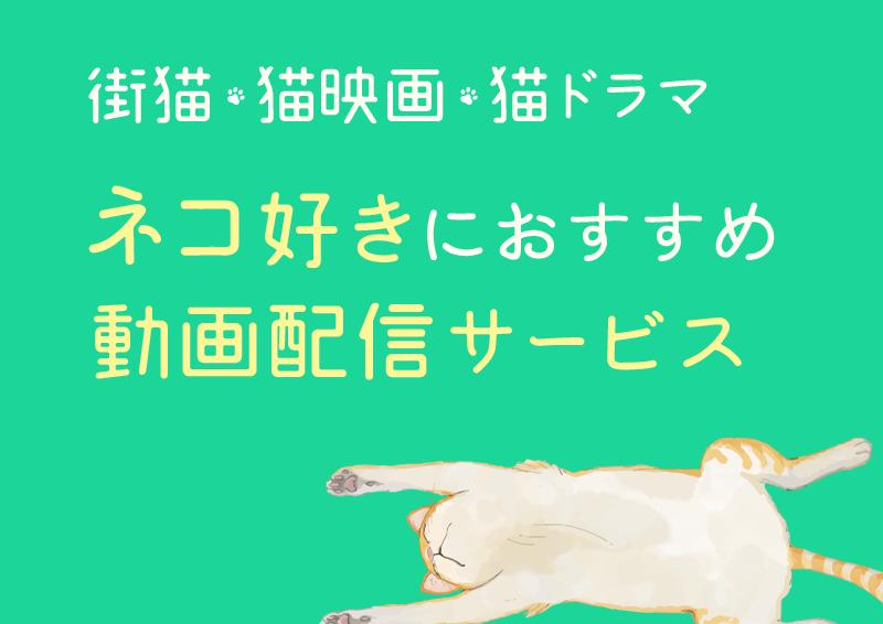 ネコ好きにおすすめの動画配信サービス【街猫・猫映画・猫ドラマ】